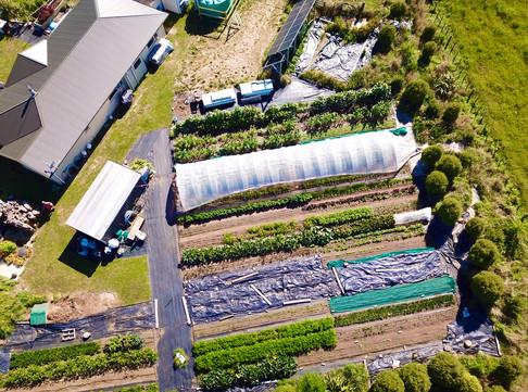 T & T Aerial shot of Goldbush Market Gar
