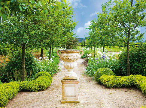 T & T Tairoa Lodge gardens.jpg