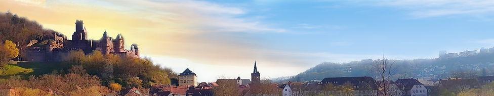 wertheim-banner_7.jpg