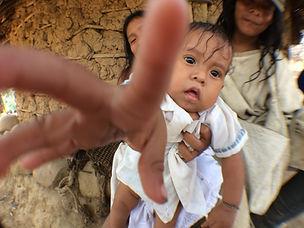 Baby Kogui