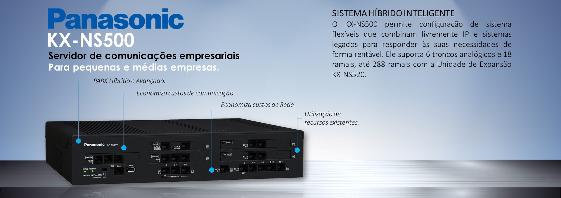 Central IP NS500