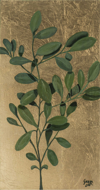 « Planta de coca », Peinture à l'huile et encre sur bois doré à la feuille. 43x22.5cm