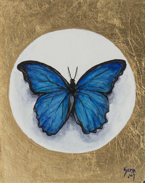 «Morpho Azul », Peinture à l'huile et encre sur bois doré à la feuille. 28x22cm