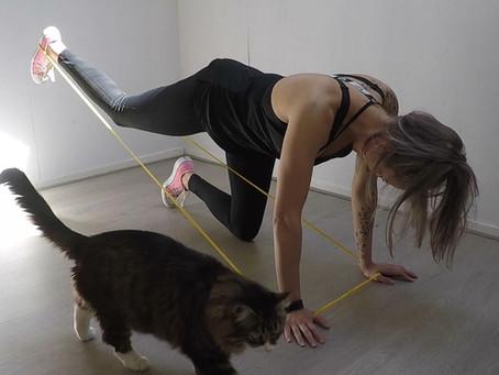 5 bilspier oefeningen die je thuis met een fitness elastiek kunt doen
