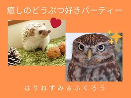 動物好き.png