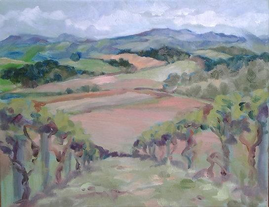 Bluestone Vineyard View North
