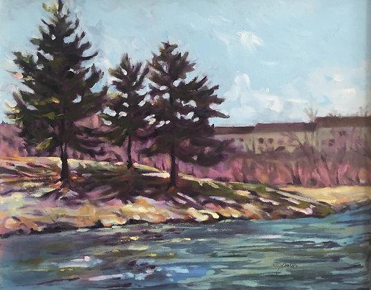Purcell Pines, Harrisonburg