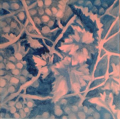 Vineyard Fruit 1