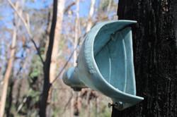 Tree-mounted hair tube.JPG