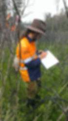 Biodiversity Monitoring Services