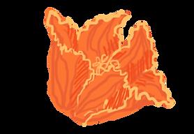 Orange-Flower-2.png