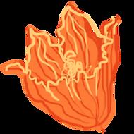 Orange-Flower-3.png