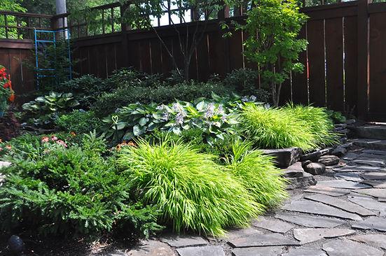 Shade garden green.JPG