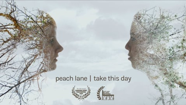 PEACE LANE - TAKE THIS DAY