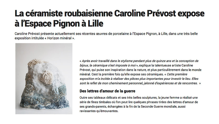 caroline prevost ceramiques porcelaine dessin lille roubaix la voix du nord espace d'art comtemporain edouard pignon caab sculpture montagne bleu blanc