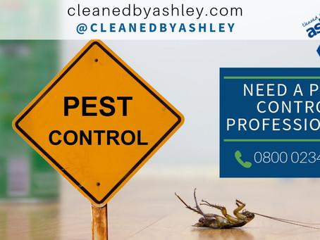 Pest Control Services London - UK