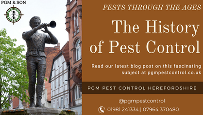THE HISTORY OF PESTS - Some interesting