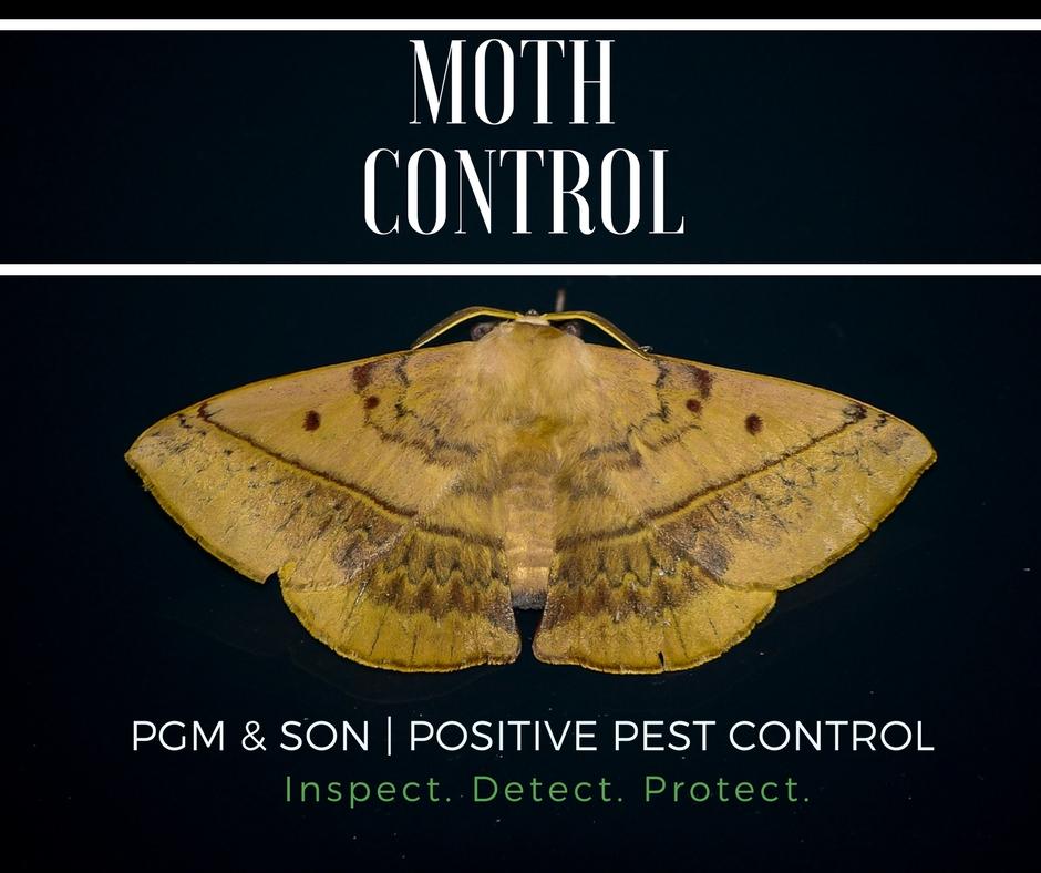 PGM | Moth Control