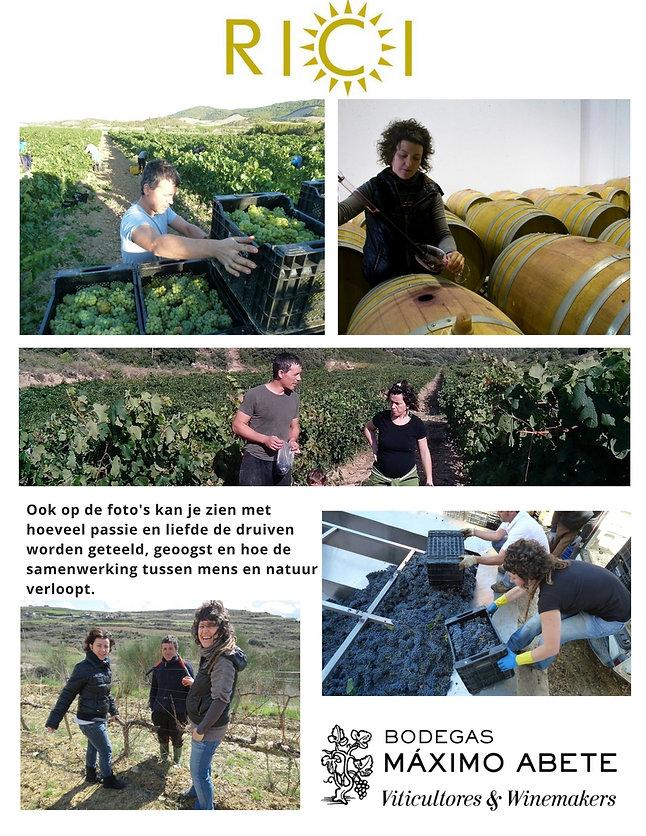 Beschrijving van Bodegas Maximo Abete, description maximo abete, wijn, wine,winemaker, wijnmaker