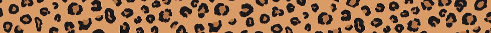 LucyHannah_LeopardPrint_Strip.jpg