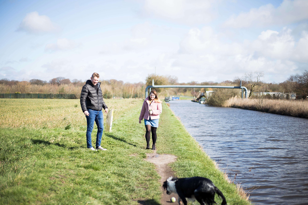 Dogs at pre wedding shoot by the canal