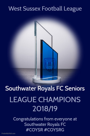 West Sussex League Winners 2018 - 2019 Season