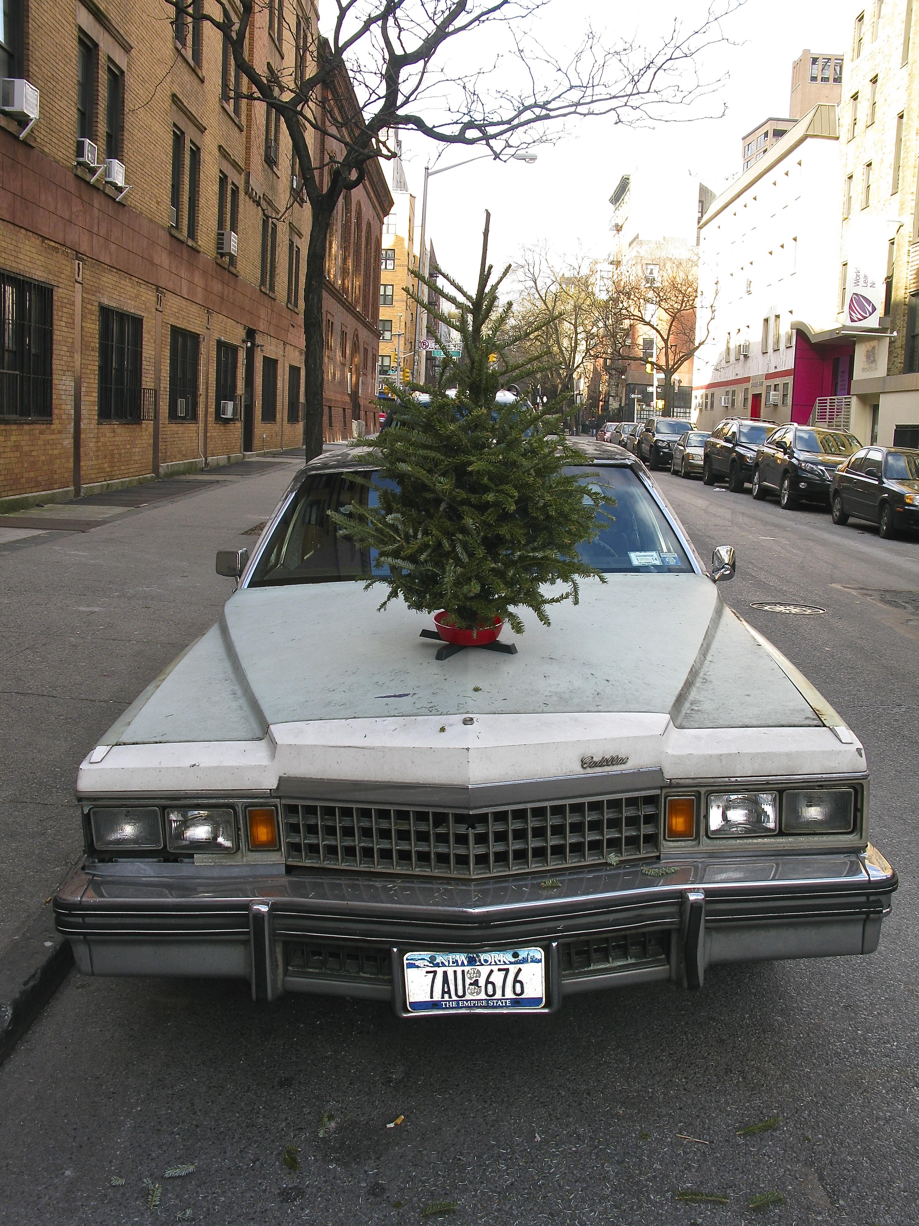 A Cadillac Christmas, 2013