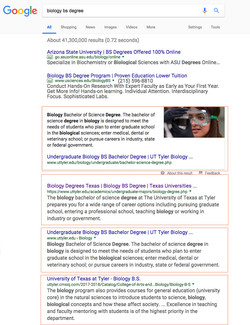 Robin Kelly SEO Google Top Placement