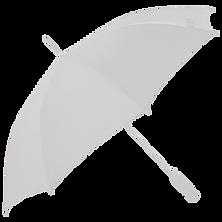 umbrella 1.png