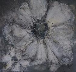 Blume grau 60x60