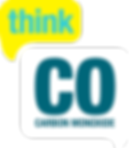 logo for organisation with information on carbon monoixde.
