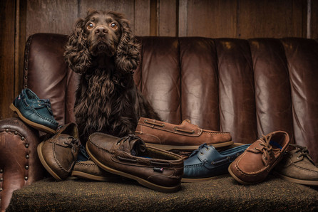 Litherland Photo Brown Cocker spaniel on leather sofa with Chatham shoes