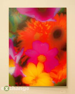 Robert Holborn Brown -- Flower Fusion