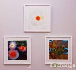 Howell Sasser digital prints