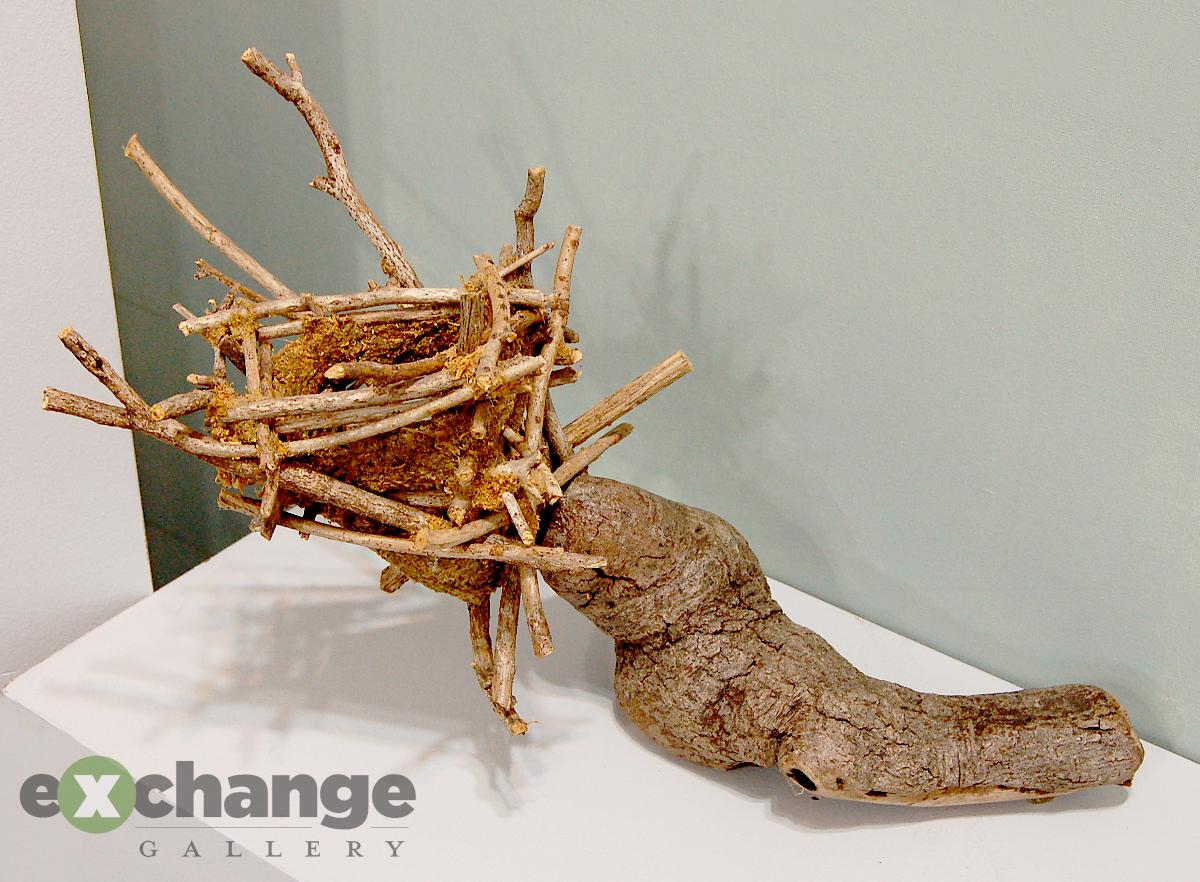 Deb Fleck-Stabley -- Nest Form #2