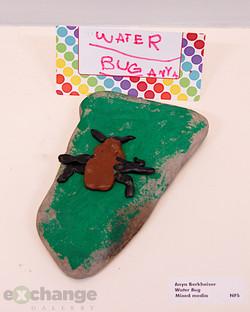 Anya Berkheiser -- Water Bug