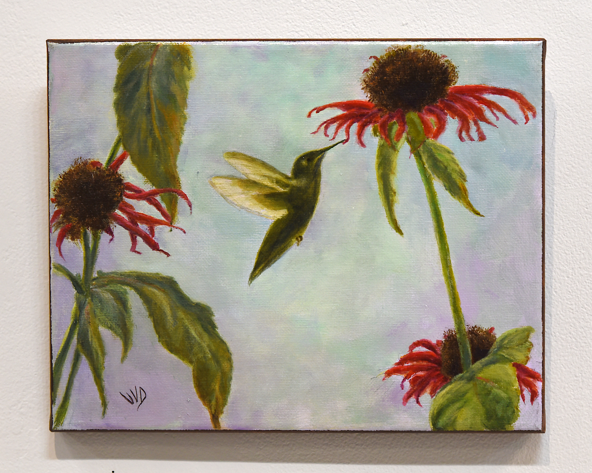 Virginia Dignazio -- Hummingbird