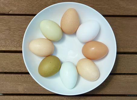 Susan's Perfect Instant Pot (hardboiled) Eggs