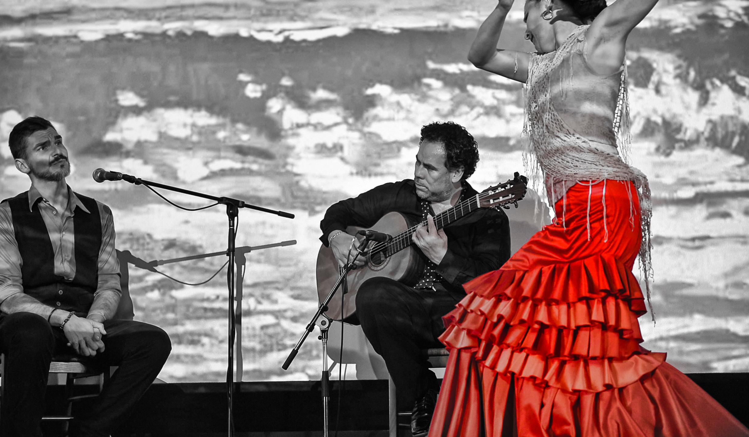 ¡Arte! Flamenco