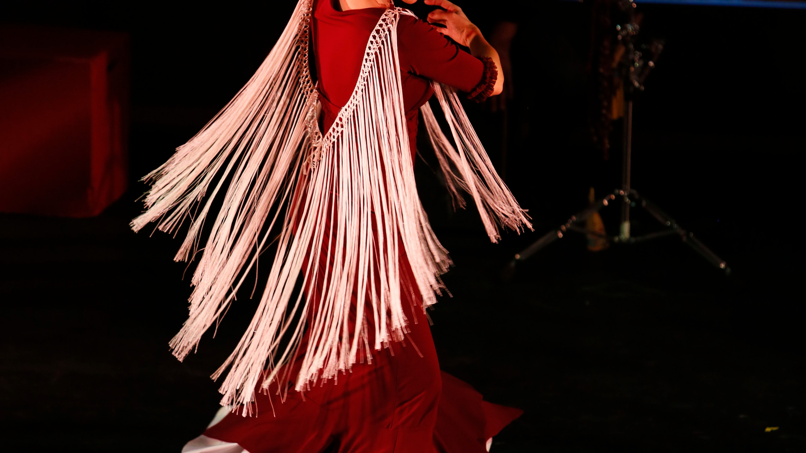 Flamenco Rosario