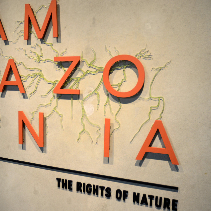 Amazonia: The Rights of Nature