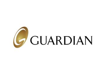 Guardian - sm.jpg