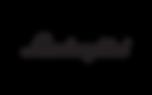 Lamborghini-text-logo-1440x900.png