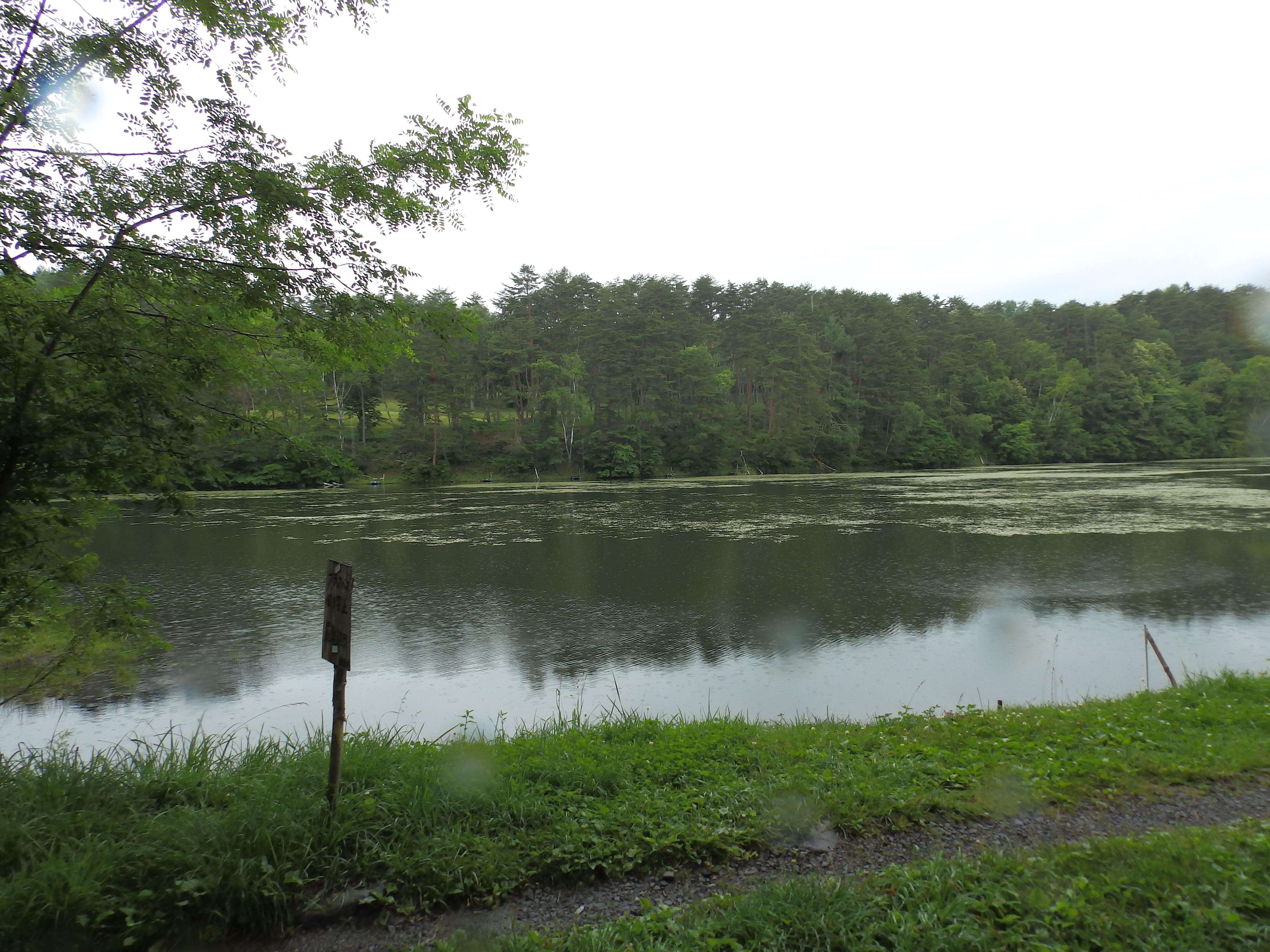 飯綱池です。