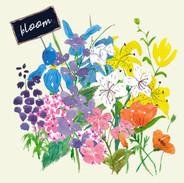 Expressive Florals bloom.jpg