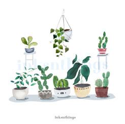 Grey Potted Plants wm.jpg
