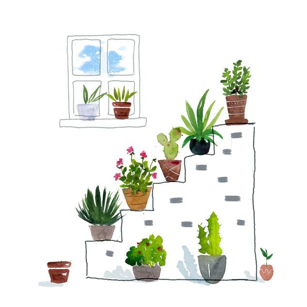 Stair Plants.jpg