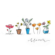Potted and unpotted flowers.png