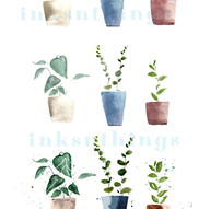 How to Paint Plants