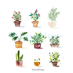 Vibrant Plants wm.jpg
